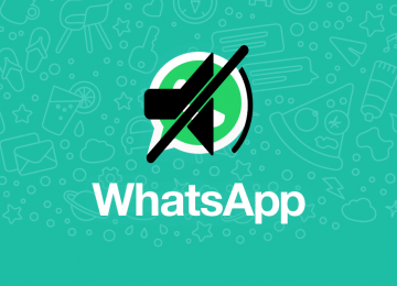 WhatsApp Groups Aren't Effective For Group Communication